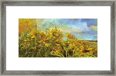 Sunflower Field Framed Print by Anne Weirich