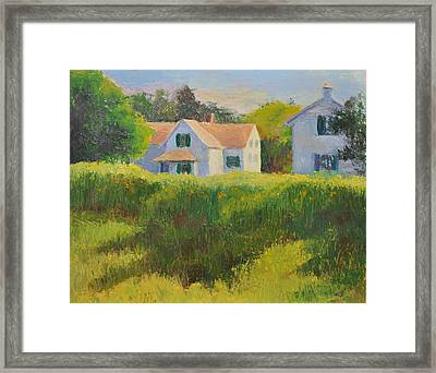 Sunflower Field Cape Cod Framed Print by Phyllis Tarlow