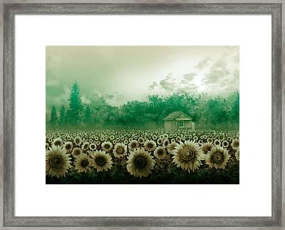 Sunflower Field Green Framed Print by Bekim Art
