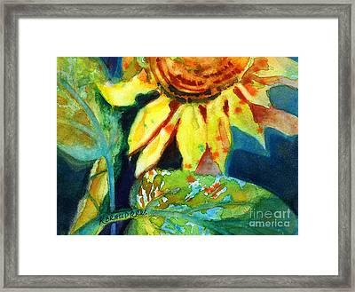 Sunflower Head 4 Framed Print by Kathy Braud