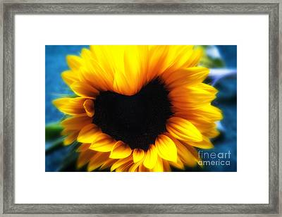 Sunflower Heart Framed Print by SK Pfphotography