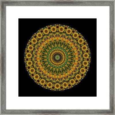 Sunflower Mandala Framed Print by Mark Kiver