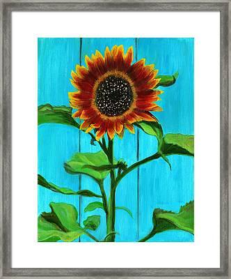 Sunflower On Blue Framed Print by Debbie Brown
