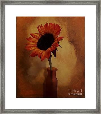 Sunflower Seed Maker Framed Print by Marsha Heiken