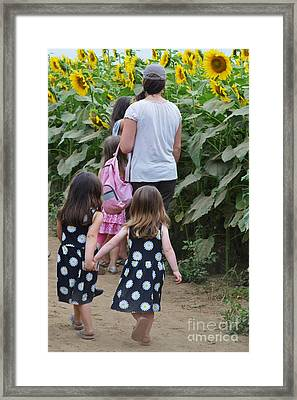 Sunflower Sisters Framed Print by Virginia Levasseur