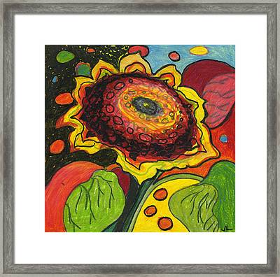 Sunflower Surprise Framed Print by Jennifer Lommers
