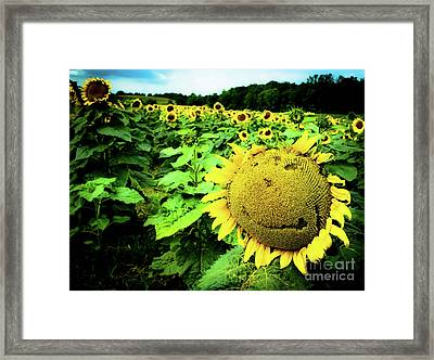 Sunflower With A Smiley Face Framed Print by Jennifer Craft