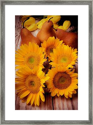 Sunflowers And Pears Framed Print by Garry Gay