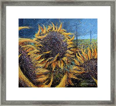 Sunflowers In Field Framed Print by Michael Glass