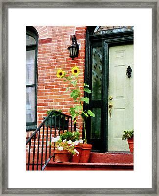 Sunflowers On Stoop Framed Print by Susan Savad