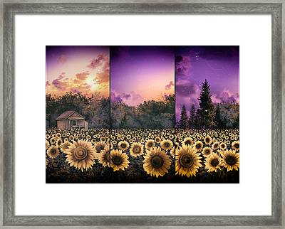 Sunflowers Triptych 2 Framed Print by Bekim Art