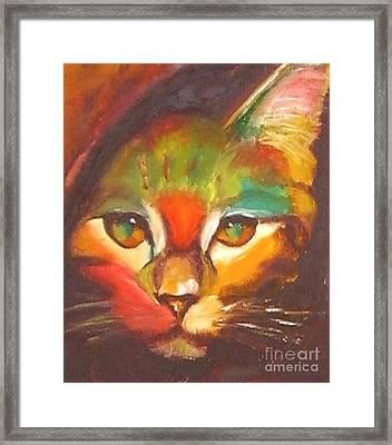 Sunkist Framed Print by Susan A Becker