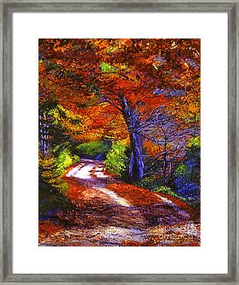 Sunlight Through The Trees Framed Print by David Lloyd Glover