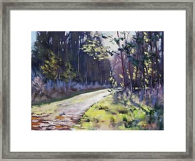 Sunlit Bend At Sunny Corner Framed Print by Graham Gercken