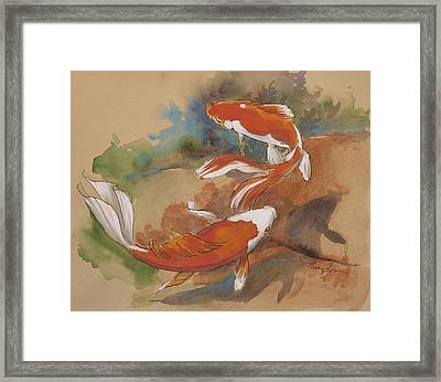 Sunlit Goldfish Framed Print by Tracie Thompson