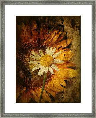 Sunny Antiqued Framed Print by Tingy Wende