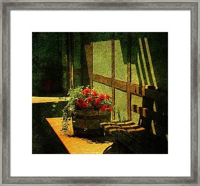 Sunny Corner Framed Print by Susanne Van Hulst