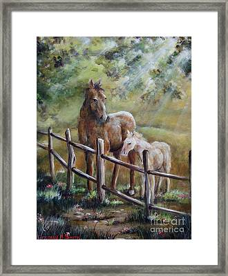 Sunny Day Framed Print by Deborah Smith