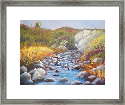 Sunny Morning On Cave Creek Framed Print by Michael McGrath