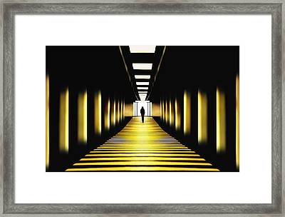 Sunny Path Framed Print by Samanta