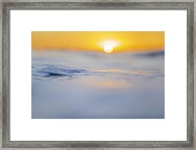 Sunny Side Up Framed Print by Sean Davey