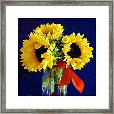 Sunny Trio Framed Print by Barbara Zahno