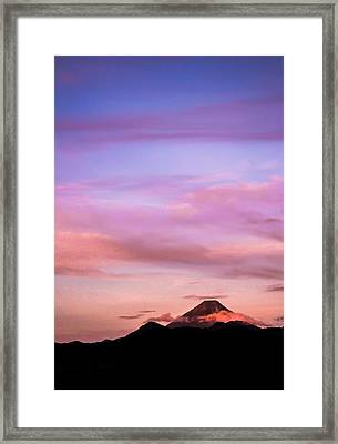 Sunrise Beauty Framed Print by Shelby Young