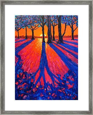 Sunrise In Glory - Long Shadows Of Trees At Dawn Framed Print by Ana Maria Edulescu