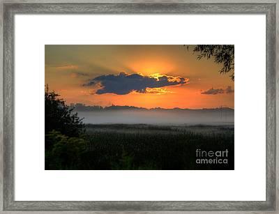 Sunrise In The Swamp-3 Framed Print by Robert Pearson