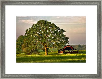 Sunrise Oak 2 The Red Barn Framed Print by Reid Callaway