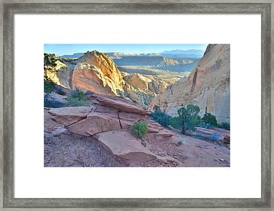 Sunrise On Burr Trail Switchbacks Framed Print by Ray Mathis
