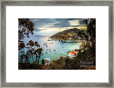 Sunrise On Catalina Island Avalon Bay California Framed Print by Paul Velgos