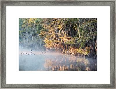 Sunrise On Crystal River Framed Print by Scott Pellegrin