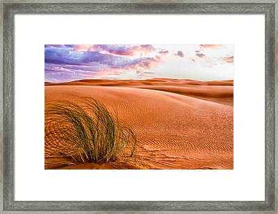 Sunrise On The Sahara Desert Framed Print by Lindley Johnson
