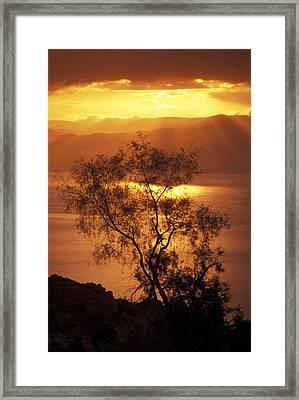 Sunrise Over Mount Nebo In Jordan Framed Print by Richard Nowitz