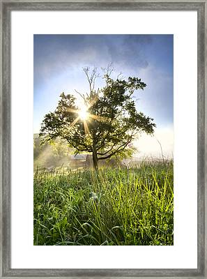 Sunrise Star Framed Print by Debra and Dave Vanderlaan