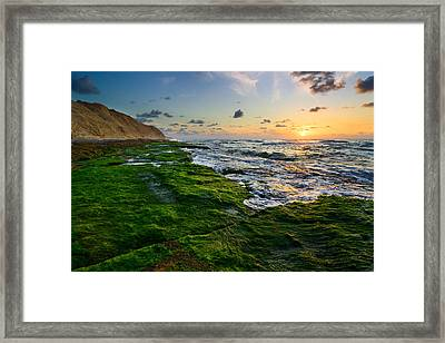 Sunset 01 Framed Print by Yuri Peress