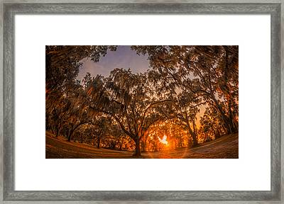 Sunset At Gascoigne Bluff Framed Print by Chris Bordeleau