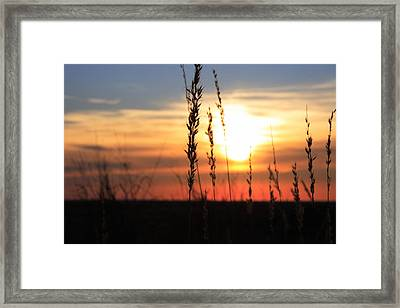 Sunset At Monument Hill Framed Print by Toni Hopper