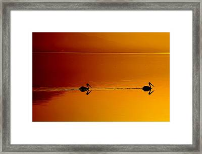 Sunset Cruising Framed Print by Laurie Search