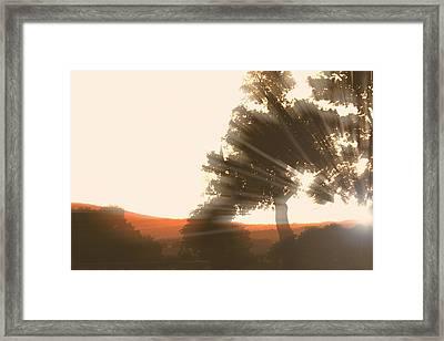 Sunset Framed Print by ELA-EquusArt