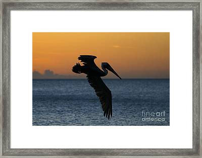Sunset Glide Framed Print by Mike Dawson
