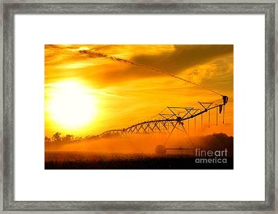 Sunset Irrigation Framed Print by Olivier Le Queinec
