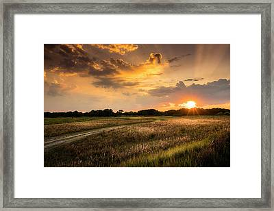 Sunset Meadow Framed Print by Marvin Spates