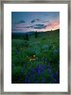 Sunset Meadow Trail Framed Print by Mike  Dawson