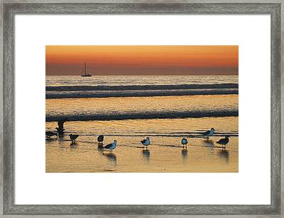 Sunset On The Beach Framed Print by Marlana Holsten