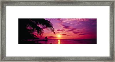 Sunset, Palm Trees, Beach, Water Framed Print by Panoramic Images