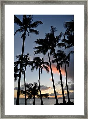 Sunset Palms Framed Print by Kelly Wade