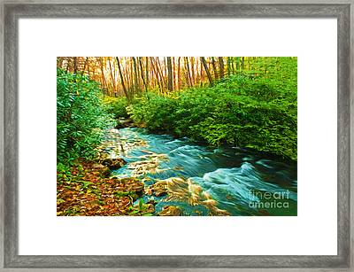 Sunset Reflections Framed Print by Laura D Young