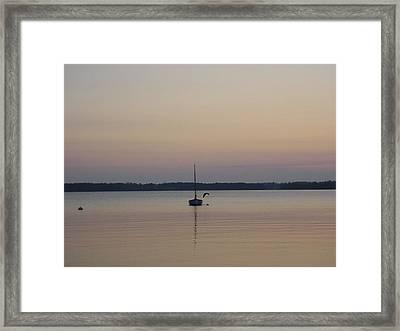 Sunset Sailing Framed Print by Kelly Mezzapelle